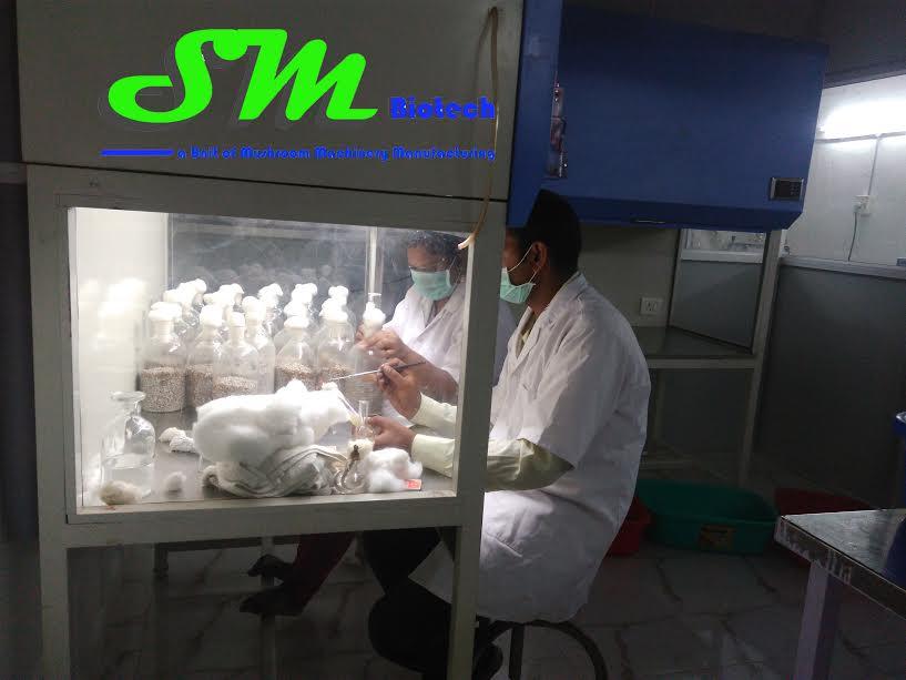 Spawn Lab Img6
